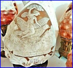 Rare collection de 14 coquillages anciens gravés en camée de décor différents